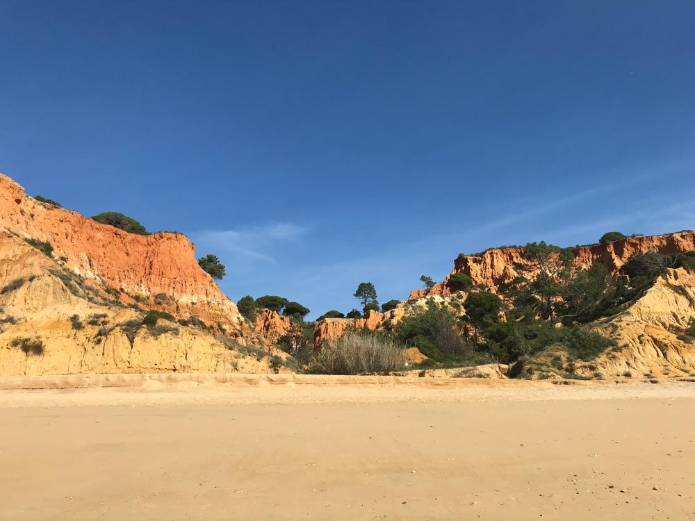 Stunning orange tree lined rocks on Praia da Falesia backed by a beautiful bright blue sky