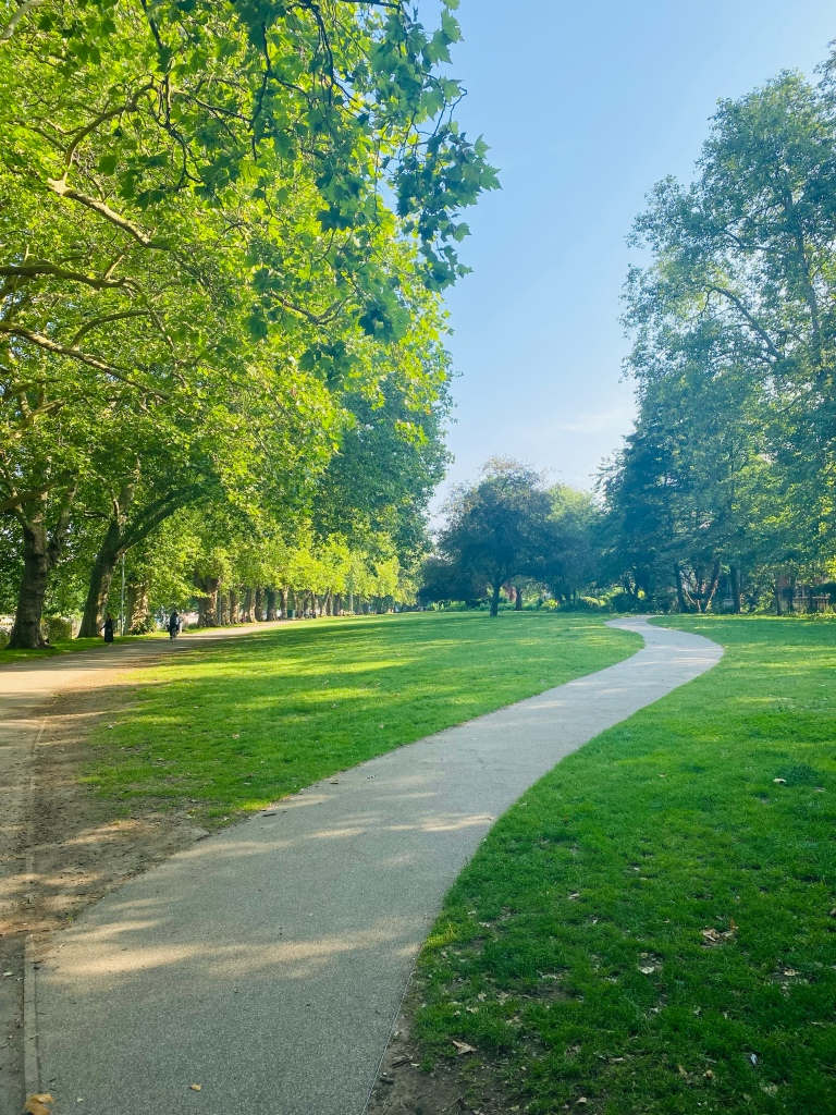 A winding path through the grass in a park with trees either side of the grass, and the sky is blue