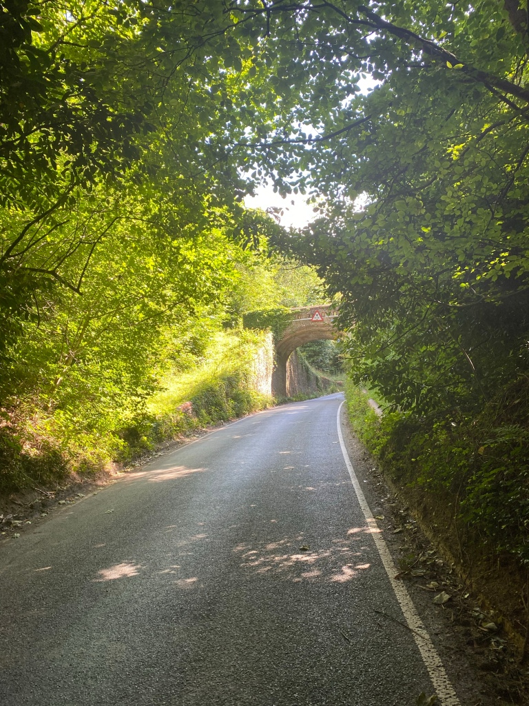 A bridge going over a road surrounded by trees which the sun is shining through