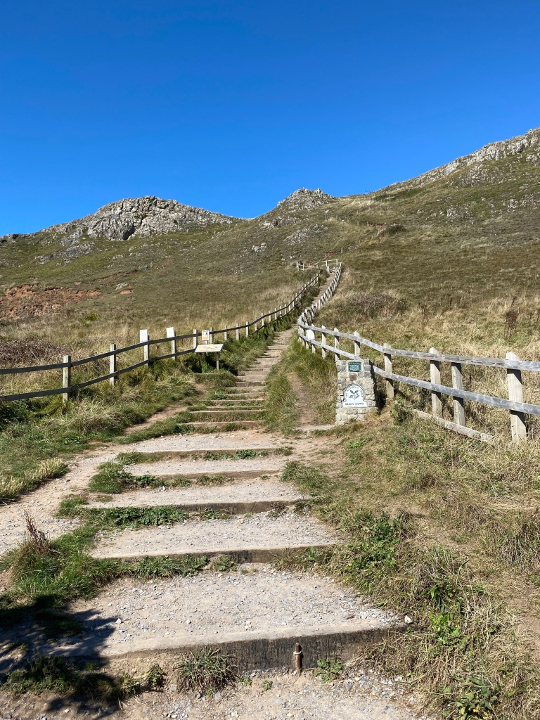 Lots of steps leading up to the top of Brean down